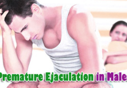 Premature Ejaculation in Males