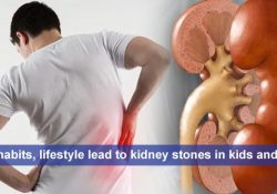 Food habits, lifestyle lead to kidney stones in kids and Adults